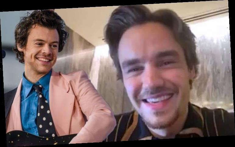 One Direction Reunion Liam Payne Leaves Fans In Turmoil With Harry Styles Facetime Clue Hot World Report
